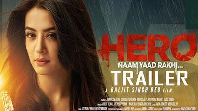 Hero Naam Yaad Rakhi (2015) Watch Full Movie Online and Download Free Avi 720p