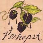 Perhapst: Perhapst