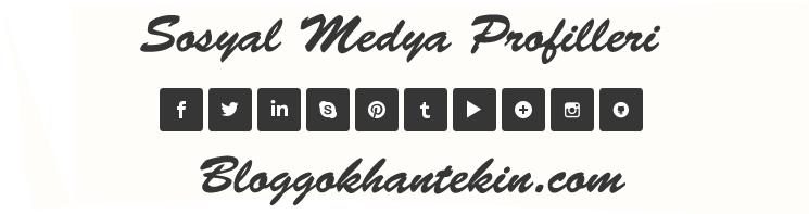 Blogger Css'li Sosyal Medya Profilleri Eklentisi