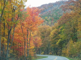 Beautiful Autumn Colors in the Great Smoky Mountains