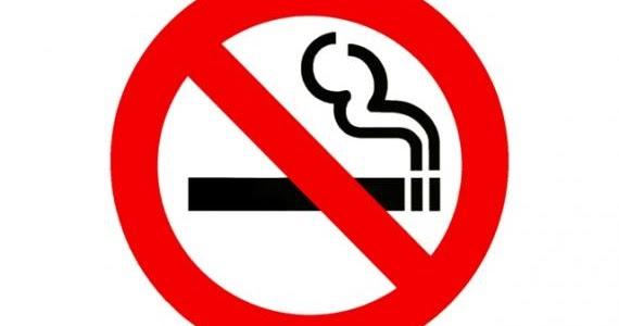Modo fácil de deixar de fumar o sumário