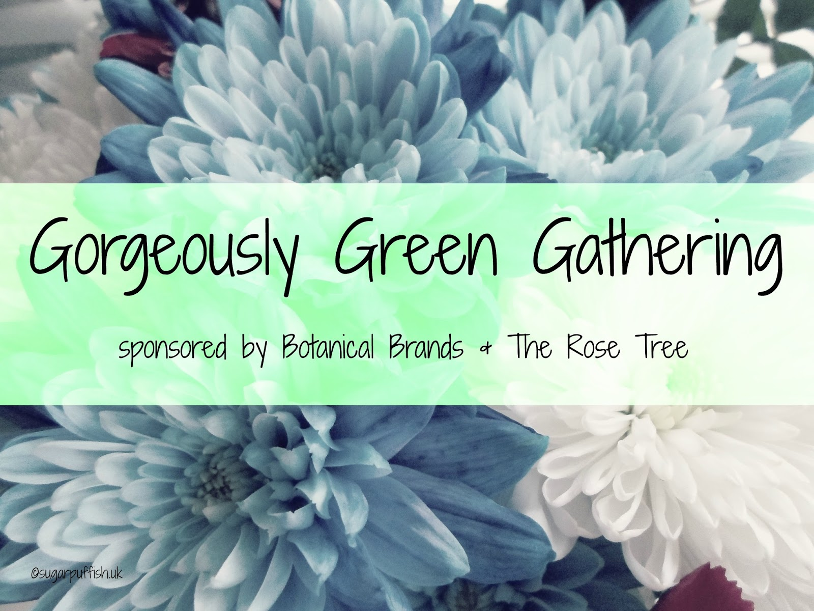 Gorgeously Green Gathering Blogger Meet Up September 2015
