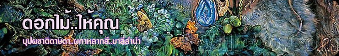 ดอกไม้ให้คุณ [Flowers in Thailand] เพลงไทยเดิม, ไม้ดอกหอม, ดอกไม้ไทย, กวีลำนำ