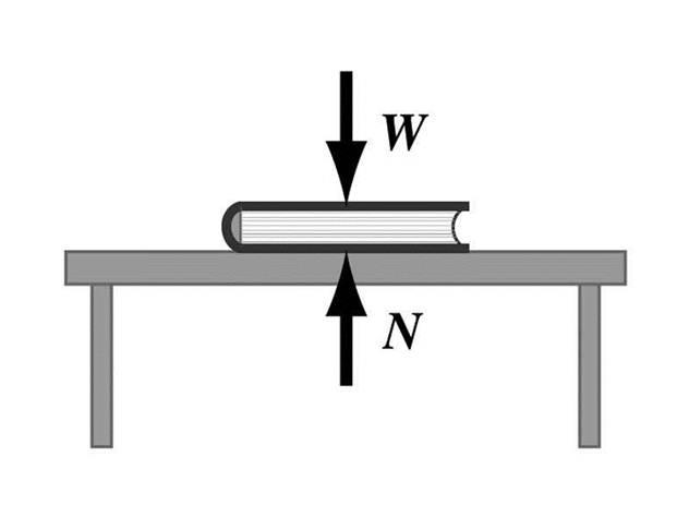 תוצאת תמונה עבור قانون نيوتن الثالث