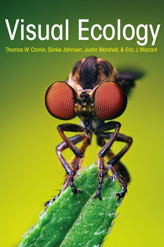 http://kingcheapebook.blogspot.com/2014/08/visual-ecology.html