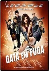 Download Filme Gata em Fuga Dublado RMVB + AVI Dual Áudio Torrent DVDRip