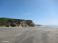 beach at Point Reyes National Seashore, California