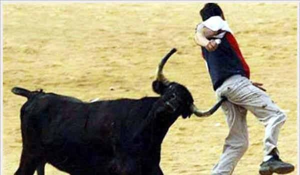 Cornada de toro
