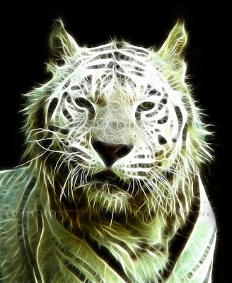 tiger fractal cats e - photo #25
