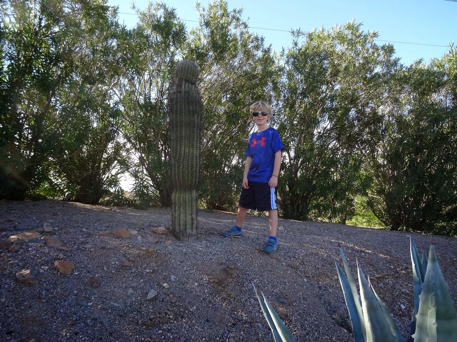 Boy Meets Cactus.