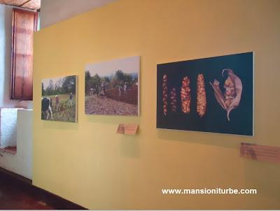 Exposición sobre el Maíz en la Región Purépecha en Pátzcuaro