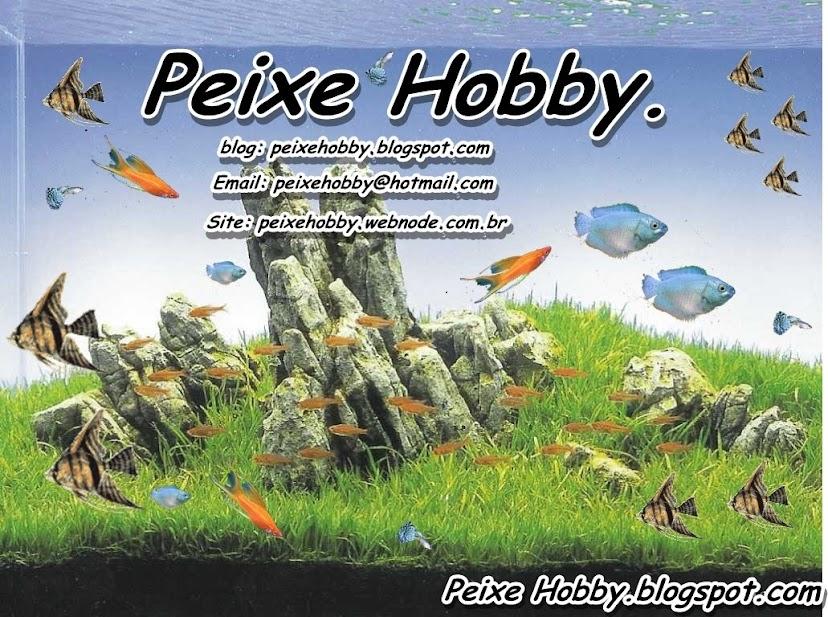 Peixe Hobby