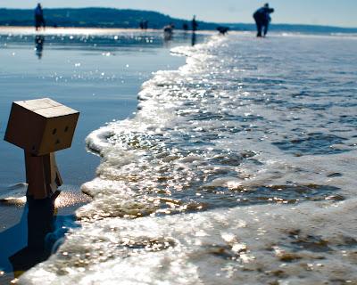 Unhappy Danboard Seaside
