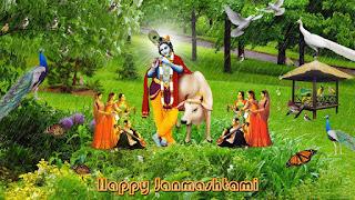 The celebration of janmashtami with gopi wallpapers