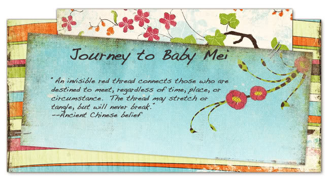 Journey to Baby Mei
