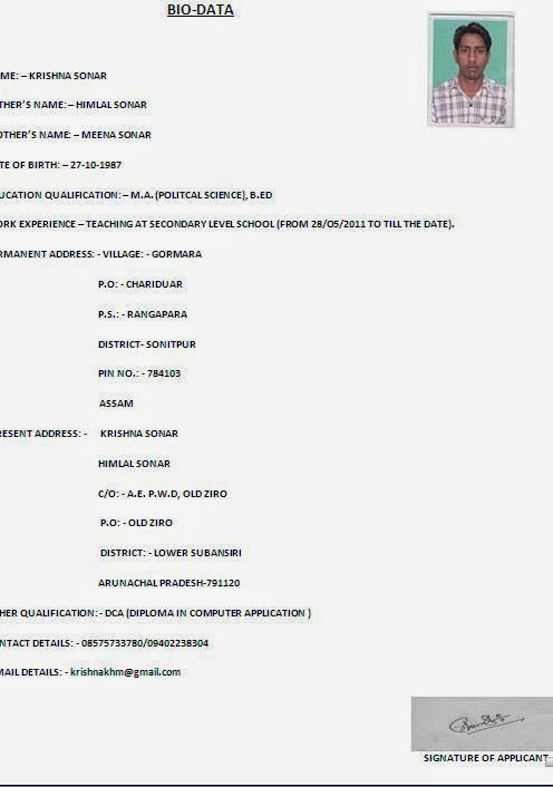 Best Resume Titles 15 000 Kinds Of Cv Formats For Free Download