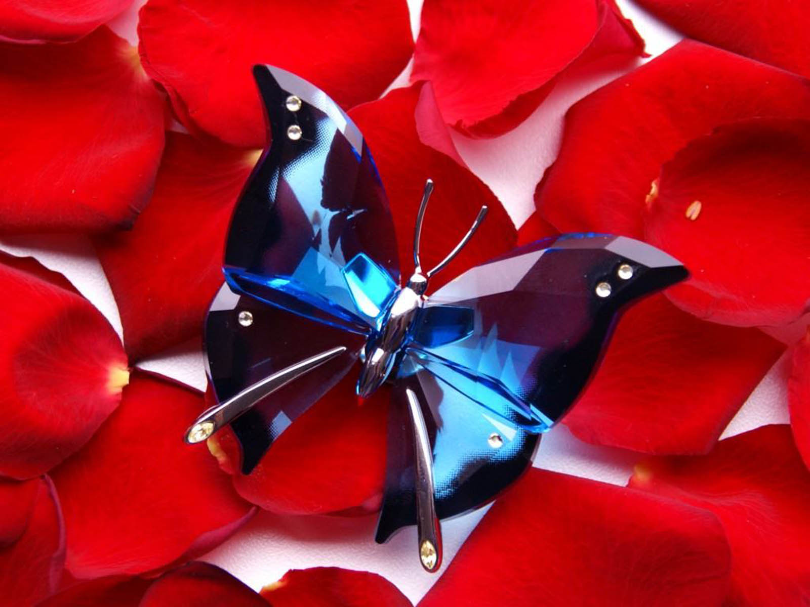 Glass Butterfly Wallpapers