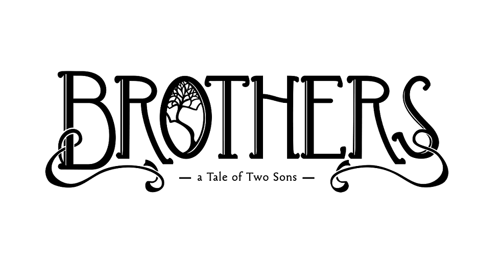 summary of two brothers by rony Two brothers is closely based on the actual circumstances and experiences of real people at a difficult time in our nation's history two brothers: one north, one south by david h jones publication date: september 1, 2008 hardcover: 320 pages publisher: staghorn press.