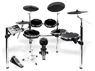 Alesis Professional Electronic Drum Set