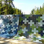 Curious Nature Crosses Quilts