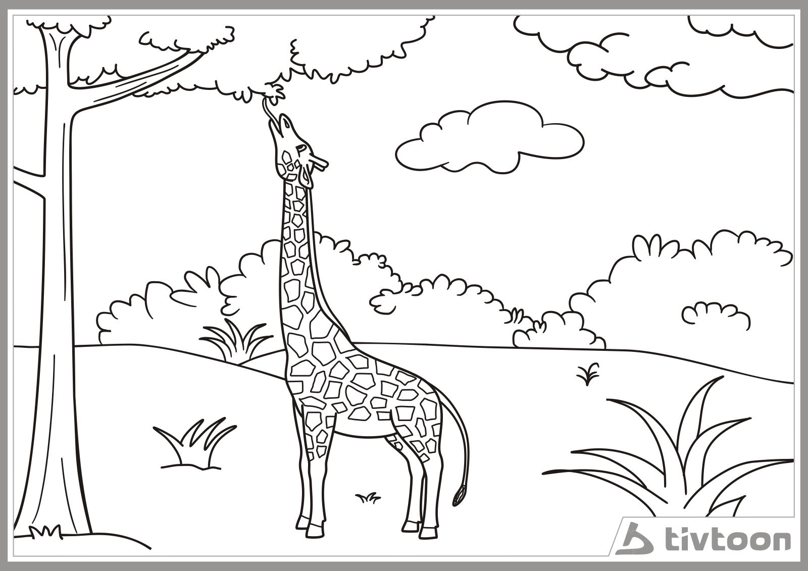 gambar kartun jerapah - gambar jerapah - gambar kartun jerapah