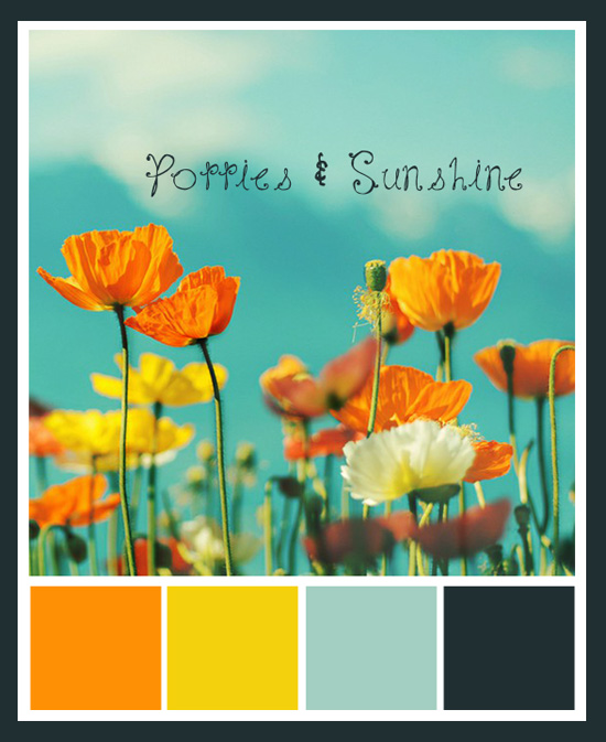 Poppies and Sunshine Color Story