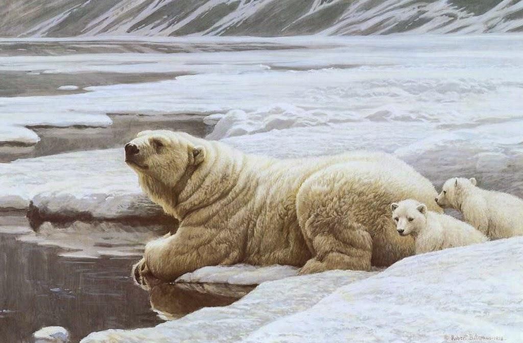 paisajes-naturales-con-animales