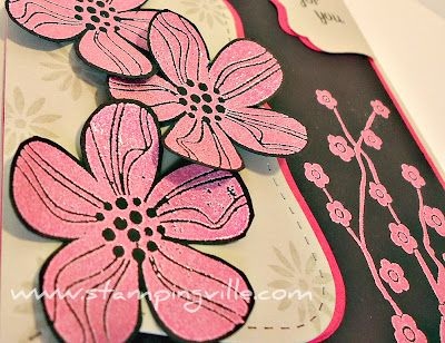 Stampin' Up! Custom-Colored Embossing Powder in Melon Mambo