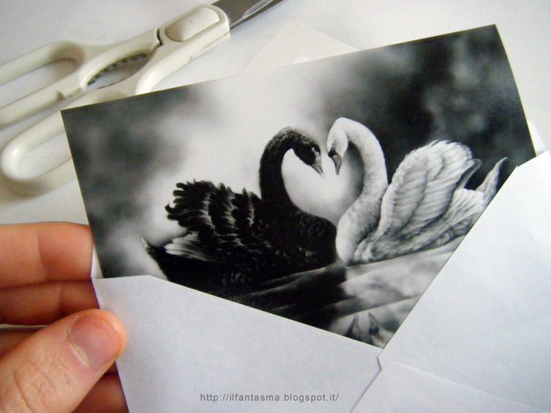 Auguri Matrimonio Gia Conviventi : Le avventure della mia fantasia biglietto di matrimonio