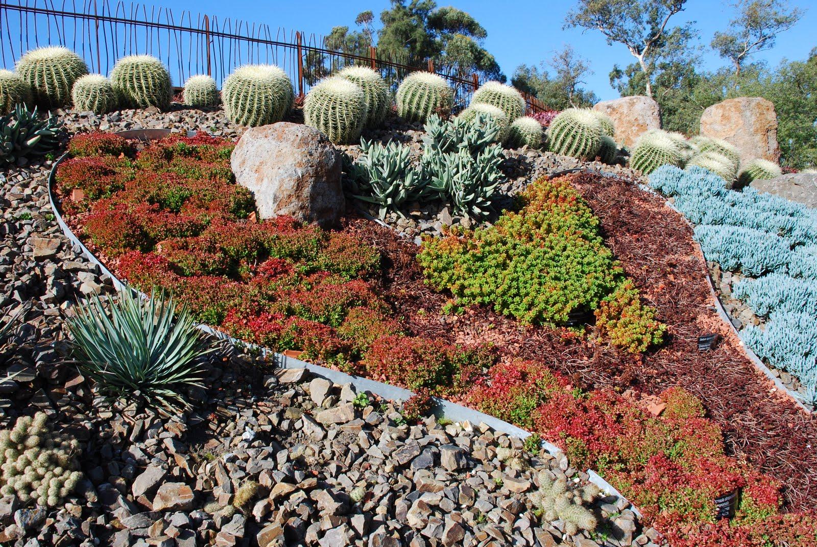 walkabouters club of victoria inc: Royal Botanic Gardens - Sunday ...