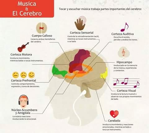 ¿Para qué sirve estudiar música?