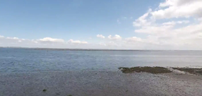 Tide at NIOZ-Yerseke (video)