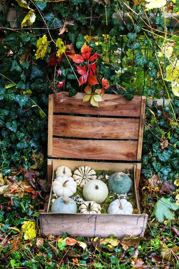 DIY Pumpkin Crate Display