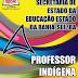 Apostila Secretaria de Educação-BA REDA 2015 - Professor Indígena