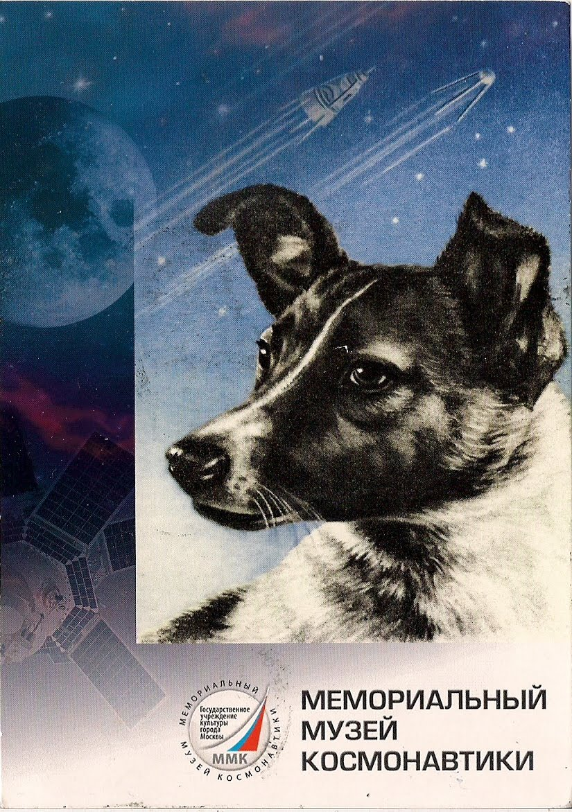 Name Of Russian Dog That Went Into Space