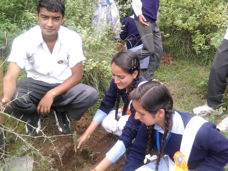 van mahotsav speech Report on van mahotsav green india, through her high-octane motivational speech and interactions she also planted a sapling at kasturba nagar.