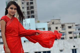 Desi Girl in Saree