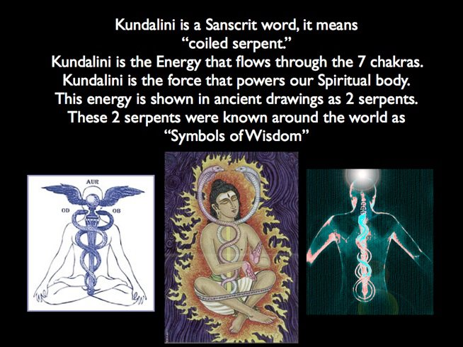Yoga Life Chakras Kundalini Dna