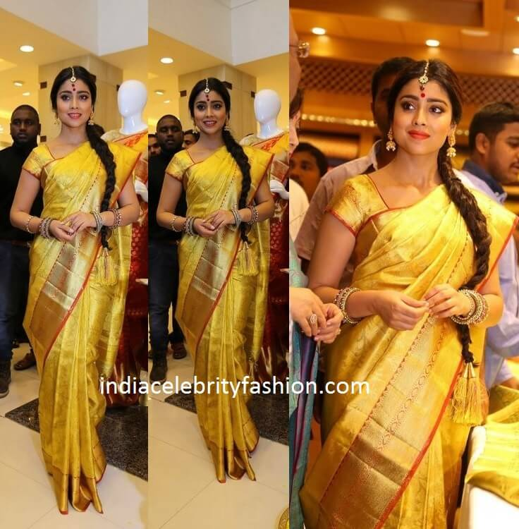 Shriya Saran in Gold Zari Silk Saree