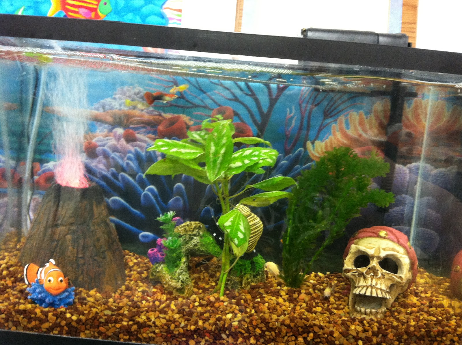 Finding nemo fish tank volcano images for Finding nemo fish tank