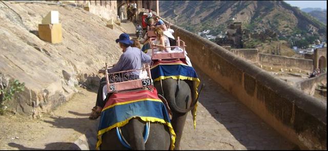 vacaciones lujo paseo elefante