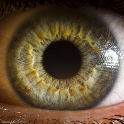 صور عيون عربيه، صور عيون خضر