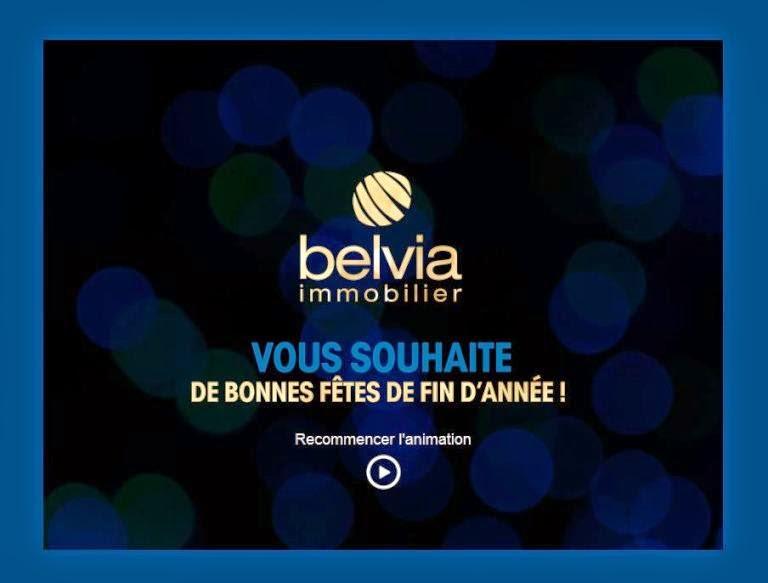 http://formulaires.belvia-immobilier.com/BELVIA_VOEUX/