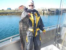 Havskatt 6,7 kg