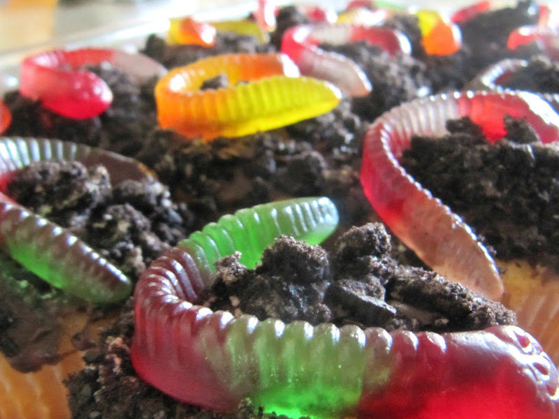 Another NinjaGo Birthday Cake & Worm Cupcakes - The Wicker ...