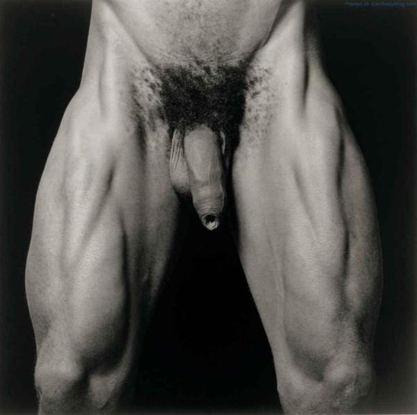 Gay Artistic 3