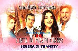 LIRIK DAN KUNCI GITAR OST CINTA DI MUSIM CHERRY (INDONESIA)