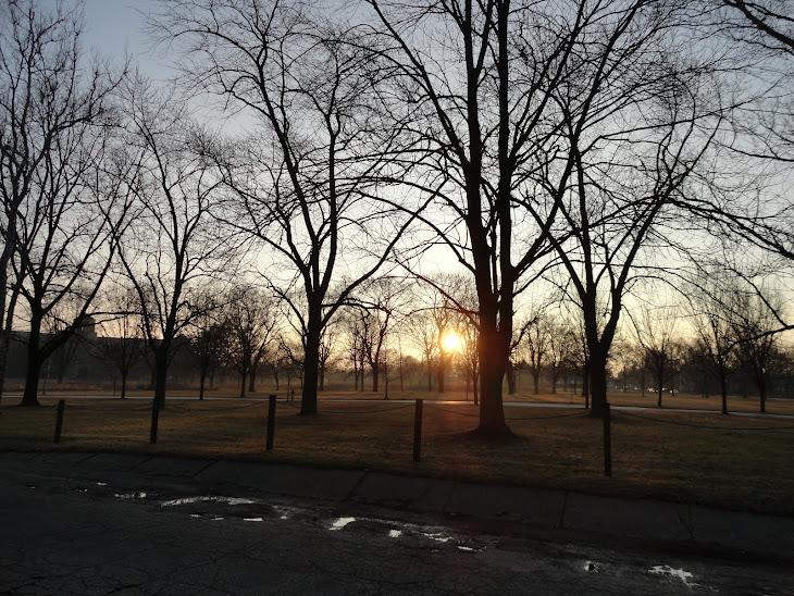 Morning at the brown brink eastward, springs