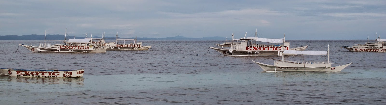 Some of Exotics dive boats