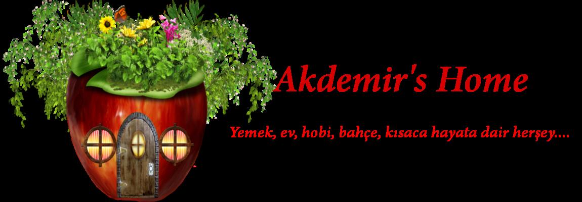 Akdemir's Home - Kişisel Blog